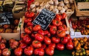 Tomatoes in France